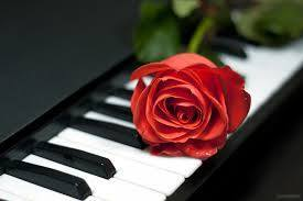 piano and rose