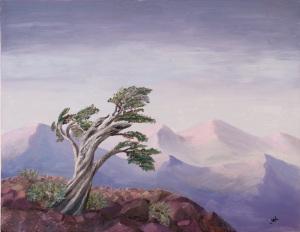Timbeline Tree